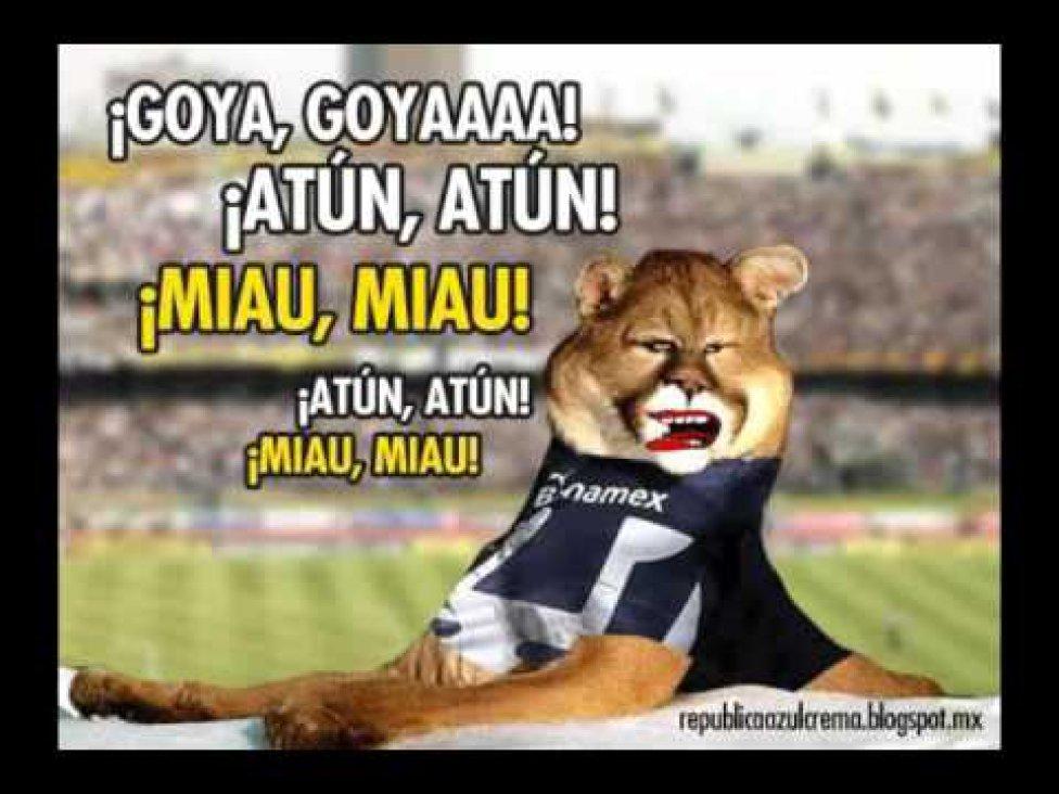 1469235374_551263_1469235615_album_grande 10 memes que ya calientan el cruz azul vs pumas de liga mx as méxico,Memes America Pumas 2016