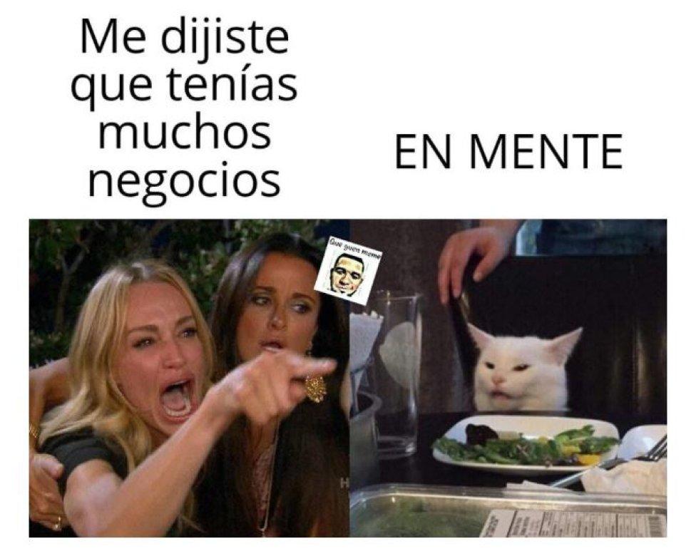 Meme Del Gato En La Mesa Las Mejores Versiones En Internet As