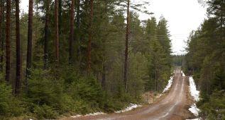 El Rally de Suecia se disputará pese a la falta de nieve