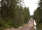 La falta de nieve llena de interrogantes la cita sueca