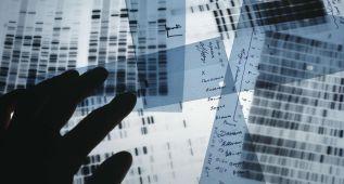 Identificado un nuevo gen asociado a la ELA