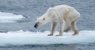 Los efectos del cambio climático en 10 imágenes actuales