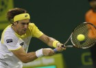 David Ferrer supera a Kamke en la segunda ronda de Doha