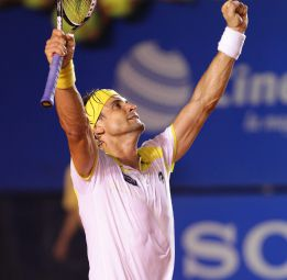 David Ferrer se clasifica para cuartos de final de Acapulco