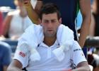 Djokovic, baja con Serbia ante la India por la permanencia