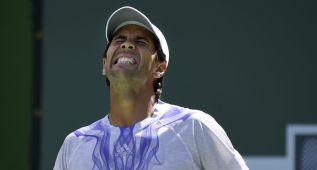 Djokovic, Murray y Feliciano, a octavos; eliminado Verdasco