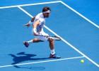 Ferrer y Bautista ya se encuentran en semifinales