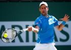 Djokovic impone su jerarquía y supera al francés Tsonga