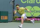 Ferrer y Verdasco ganaron y pasan de ronda con Djokovic