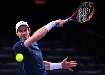 Murray - Isner; Final Masters 1000 de París: Resumen