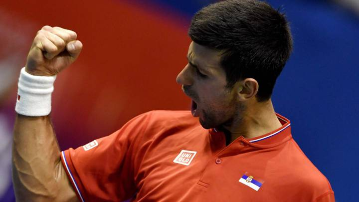 Serbia\'s Novak Djokovic celebrates after winning against Spain\'s Albert Ramos-Vinolas their Davis Cup World Group quarterfinals single match between Serbia and Spain at the \