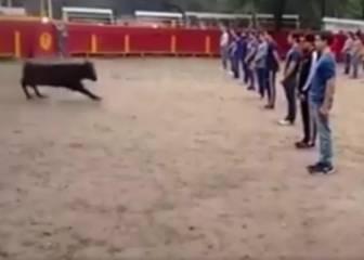 Un toro sale a un ruedo lleno de personas y no ataca a ninguna