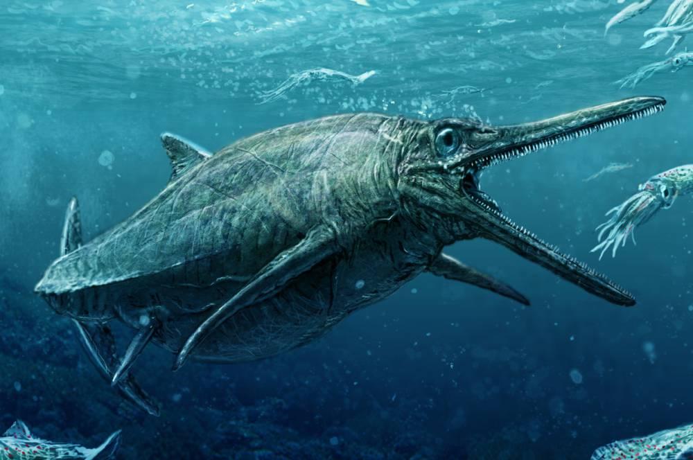 ¿Ha resuelto Escocia el misterio del monstruo del lago Ness?
