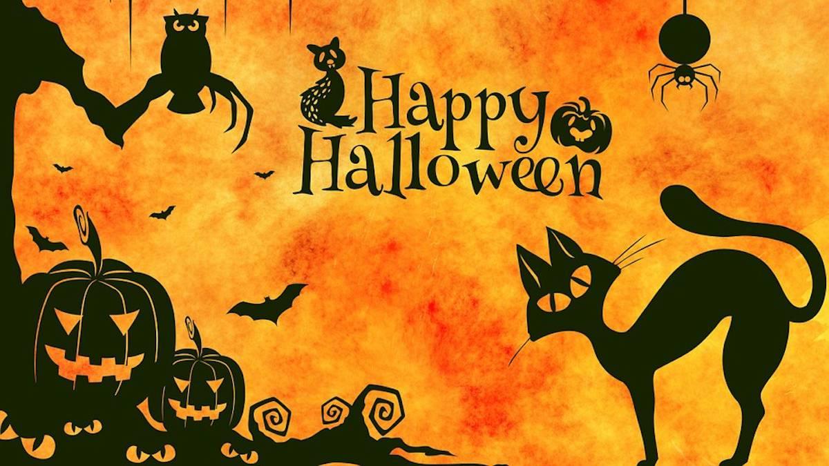 Qué es Halloween y desde cuándo se celebra. Imágen: Pixabay
