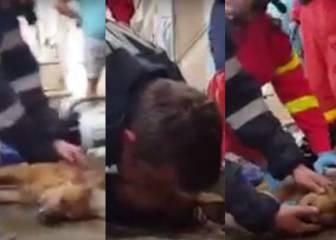 Un bombero salva la vida de un perro al practicarle el boca a boca