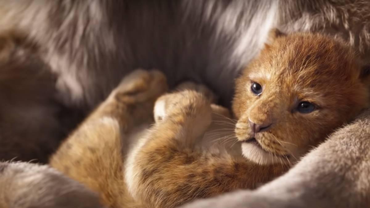Resultado de imagen de rey leon 2019