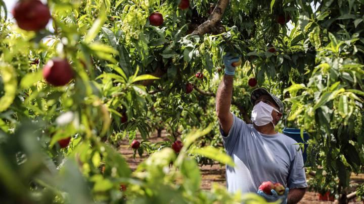 frases para celebrar el día internacional del trabajador 1 de mayo