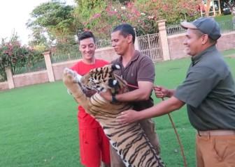 Özil se atreve con todo: ¡Le da de beber leche a un tigre!