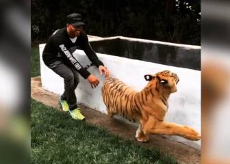 ¡Hamilton está loco! ¡Asusta por la espalda a su tigre!