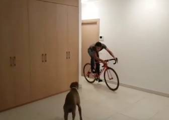 Contador does his best Benny Hill impression...but beware the dog!