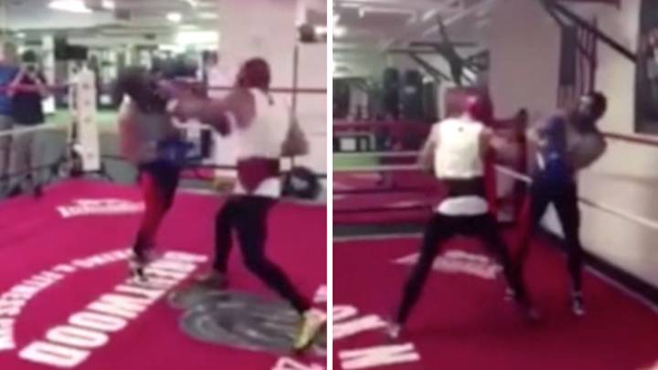 Footage of McGregor sparring will not leave Mayweather quaking in his boots