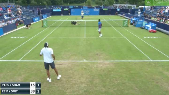 Tennis star takes a tumble but wins point with cheeky return