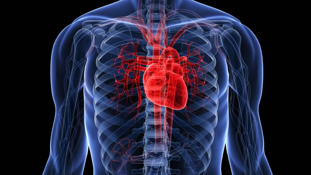 Escanear El Corazón Humano El Método Definitivo De Desbloqueo Ascom