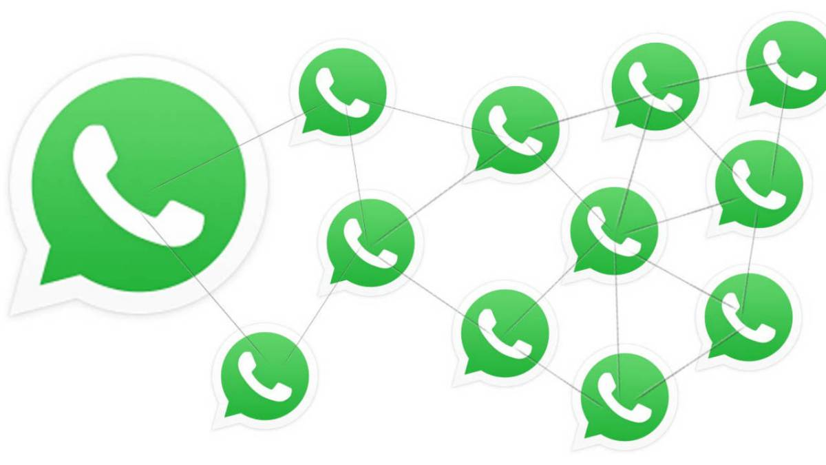 Novedades WhatsApp: Vista previa y confirmar reenvíos múltiples