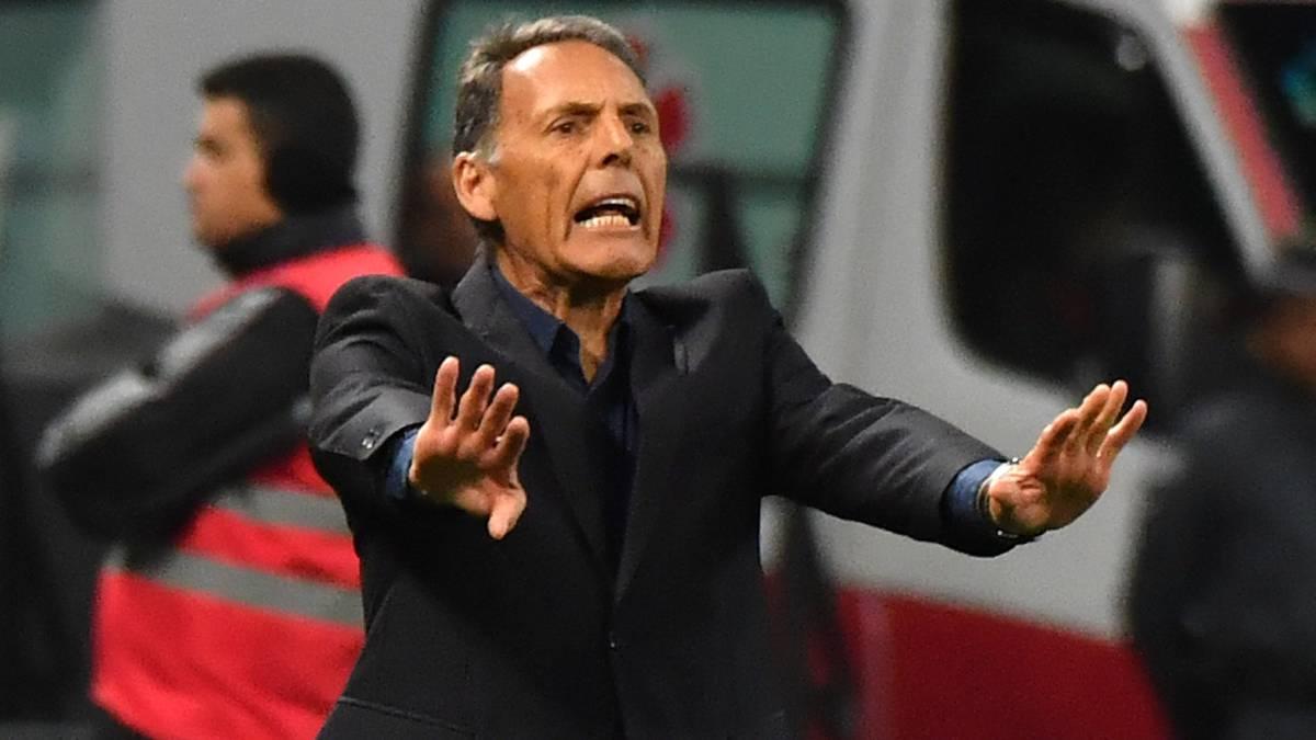 Miguel Ángel Russo estará en el sorteo de la Copa Sudamericana y Libertadores para conocer el rival de Millonarios
