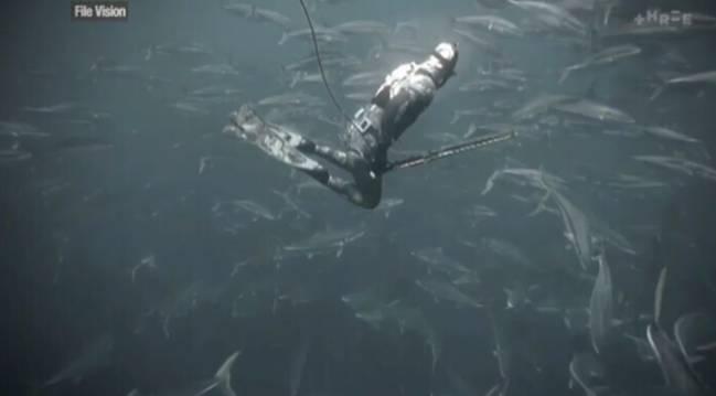 pesca submarina iman tiburones