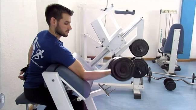 Banco scott para biceps
