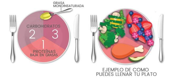 es buena la dieta de las proteinas