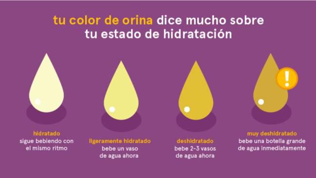 deshidratación, hidratación, síntomas, orina. salud, agua