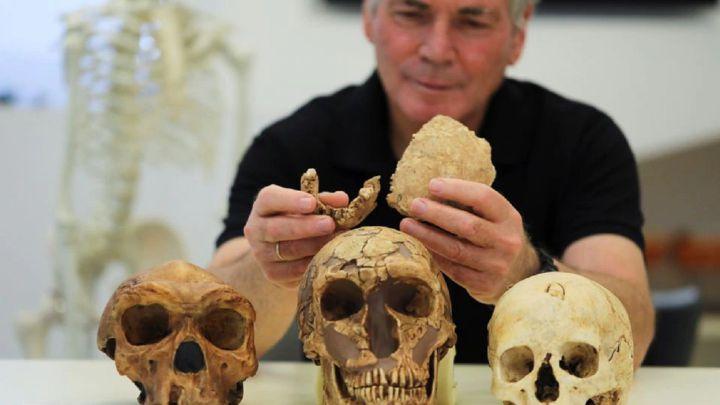 Hallan en Israel una nueva especie humana desconocida - AS.com