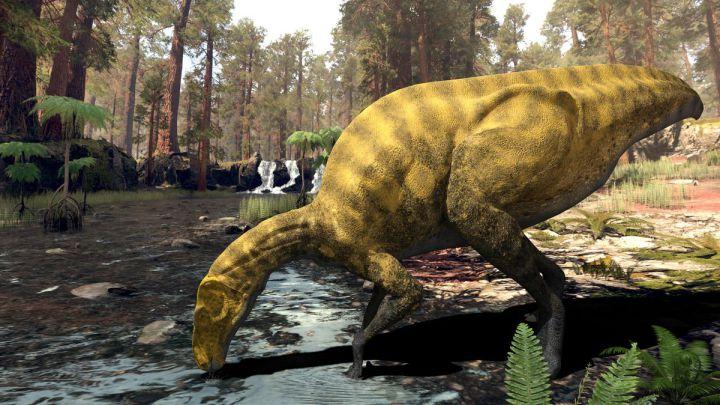 Descubren una nueva especie de dinosaurio en Castellón