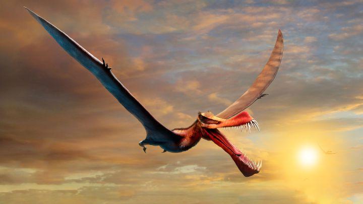 """Encontrados los restos de un """"temible"""" dinosaurio volador"""