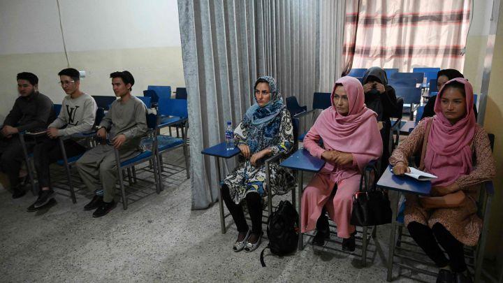 Las reglas de los talibanes para las mujeres en la universidad