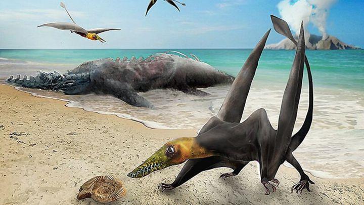 Descubren restos de un 'dragón jurásico' en Chile