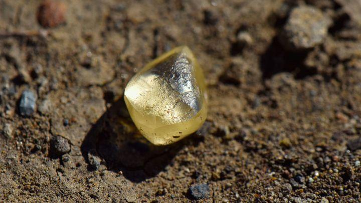 Encuentran un diamante amarillo de 4 quilates en un parque nacional