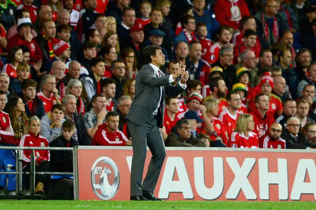 Wales stars want Chris Coleman to continue as coach