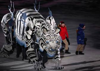 Dazzling opening ceremony launches PyeongChang Winter Olympics