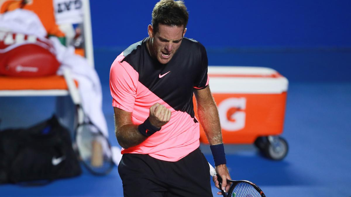 Del Potro continues Anderson dominance to win Acapulco title