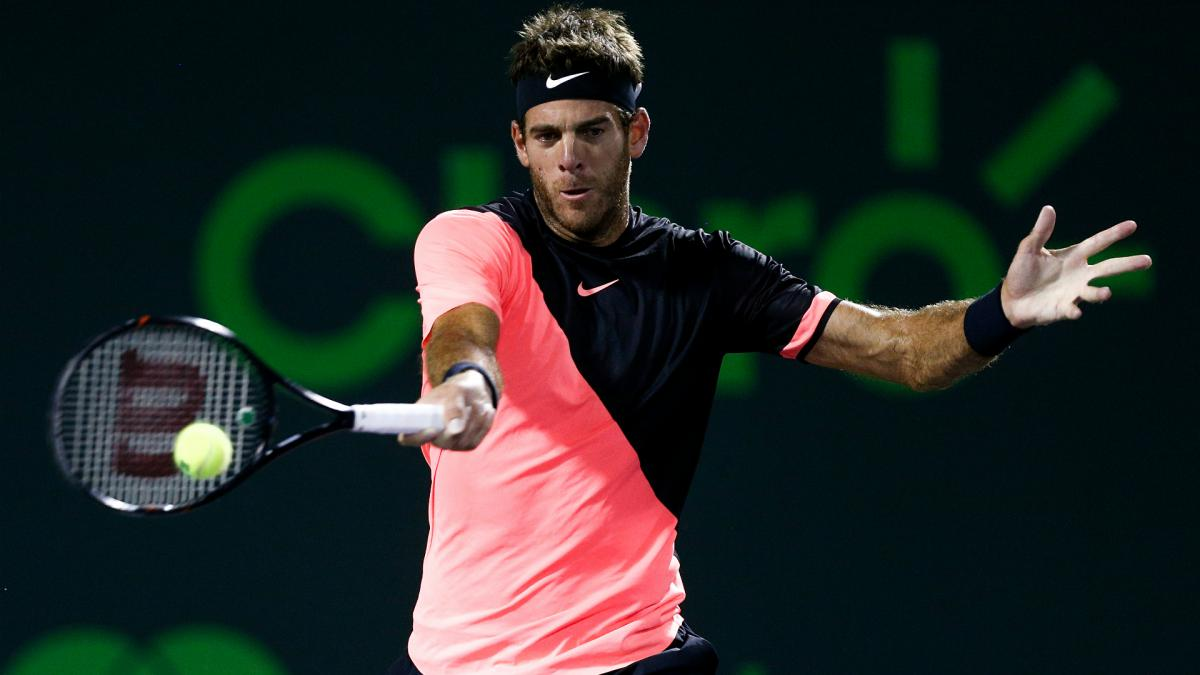 Del Potro outlasts Raonic for 15th successive win, faces Isner in semis