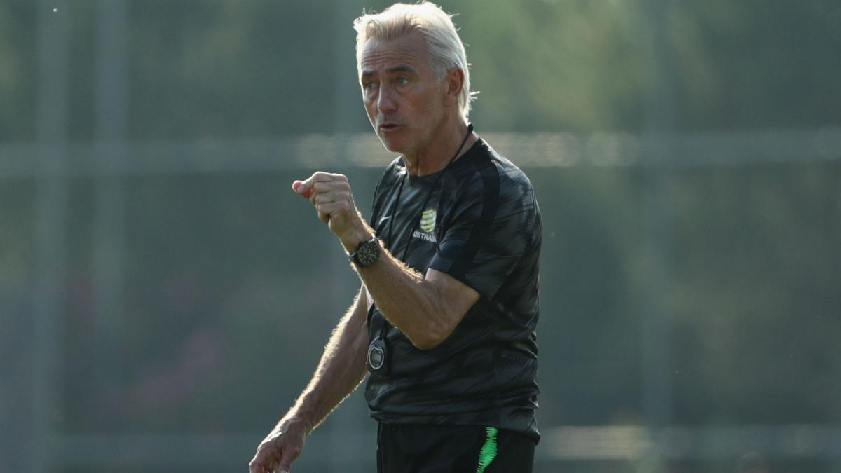 Van Marwijk paying Australia coaching staff out of his own pocket