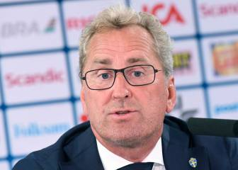 Erik Hamren named Iceland's new manager