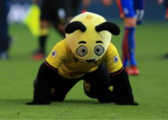 Hodgson brands Harry the Hornet 'disgraceful'