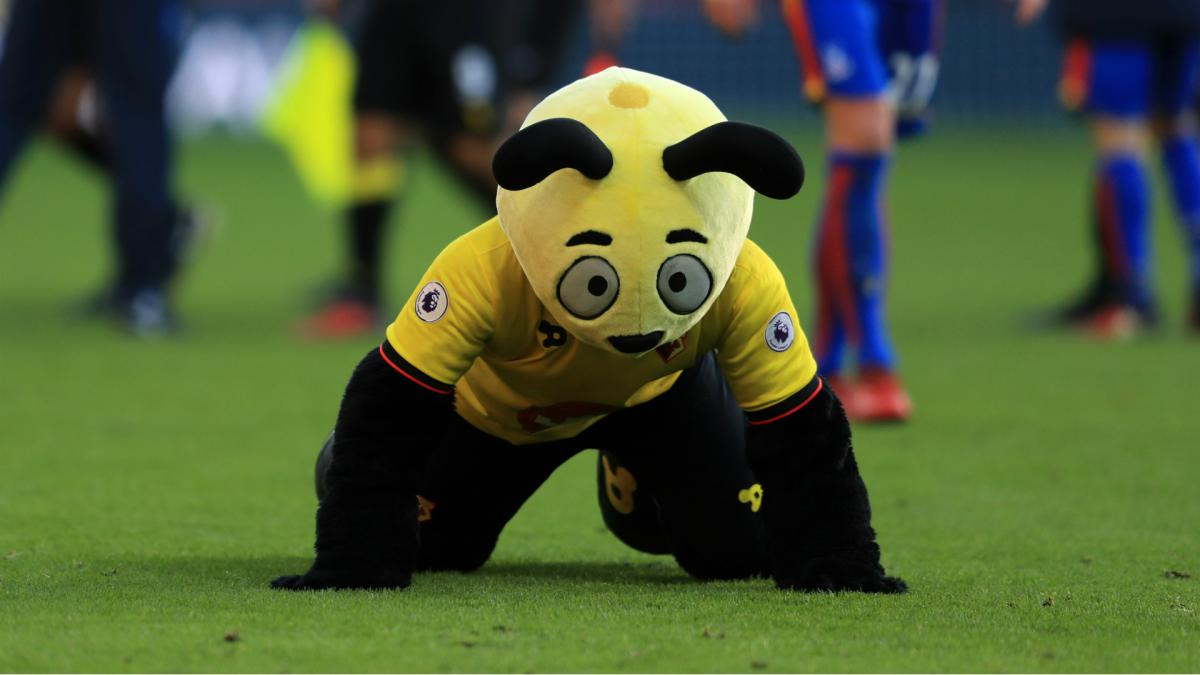 Hodgson brands Harry the Hornet 'disgraceful' over Zaha antics