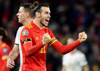 "Berbatov: ""Bale was silly to celebrate with that flag"