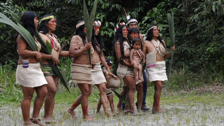 Pictures Of Tribes In The Amazon Rainforest
