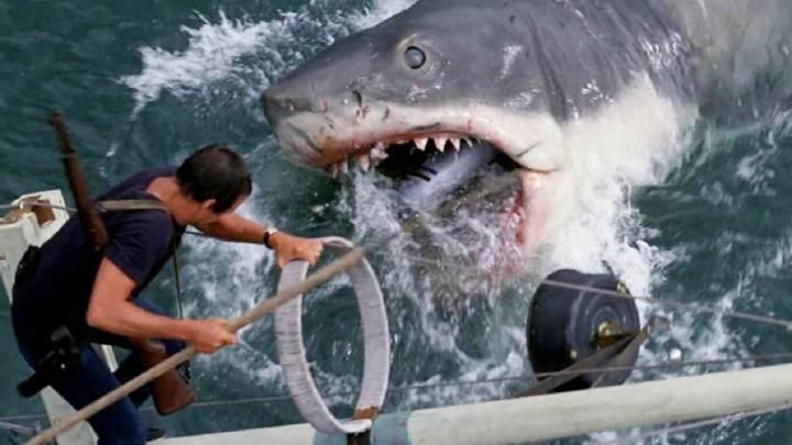 45 Años De Tiburón Las Redes Recuerdan El Trauma Que Les Generó Spielberg As Com